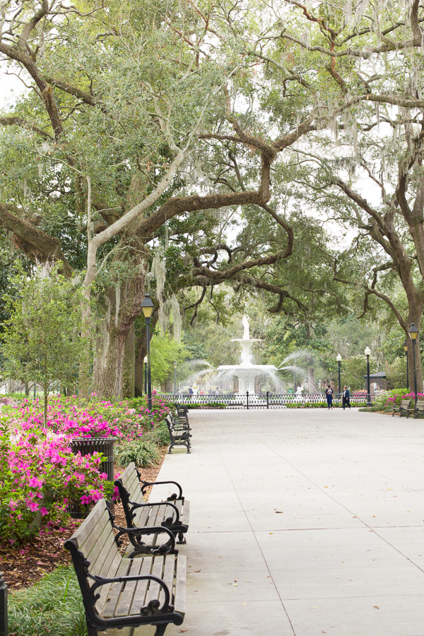 Forsyth Park, Savannah | www.heartandstove.com
